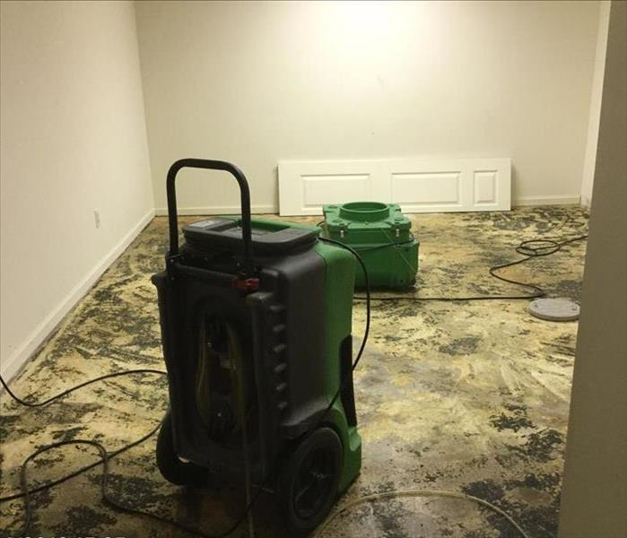 Mold Problem in Local Home After